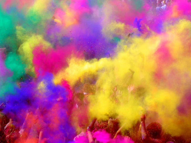 Holi Color Fest At Flower Fields; Butterfly Jungle Opens