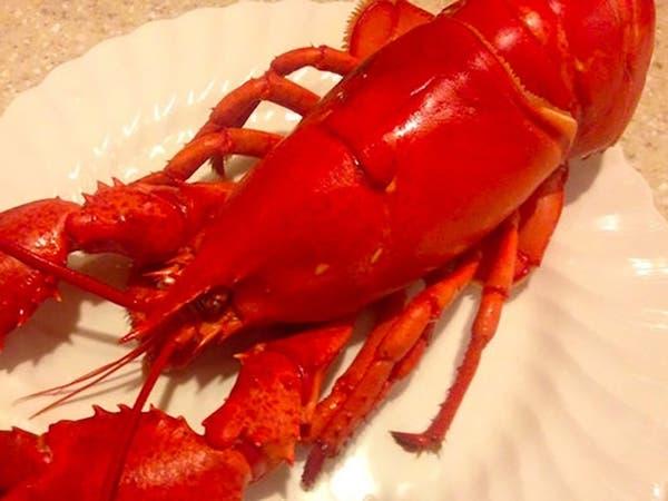 Belmont & Redwood Shores Rotary's Lobster Fest 2020: Belmont