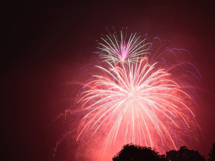 Jul 4   CANCELED: July 4th Fireworks 2020: Discovery Meadow, San