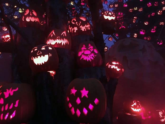 Halloween 2020 Pumpkin Intro Oct 1 | OPENING: 'Nights Of The Jack' 2020: King Gillette Ranch