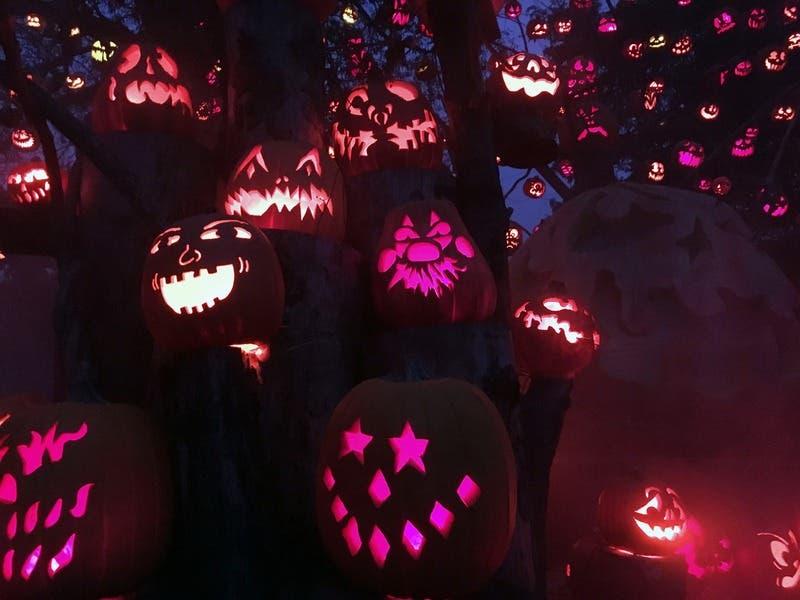 Halloween Petaluma 2020 Oct 17 | Halloween Home Decorating & Pumpkin Contests 2020: Napa