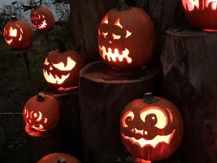 Palo Alto Halloween 2020 Oct 30 | Moonlight Jack O Jaunt   Halloween 2020: Palo Alto | Palo