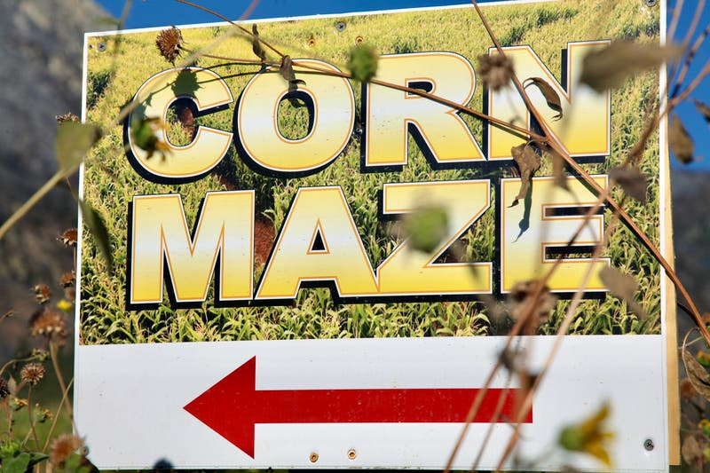 OPENING: Cool Patch Pumpkins & Corn Maze 2021: Dixon