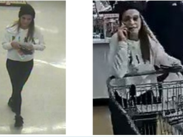 Woman Went On Shopping Spree Using Stolen Credit Cards: PD