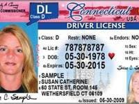 connecticut drivers license for immigrants