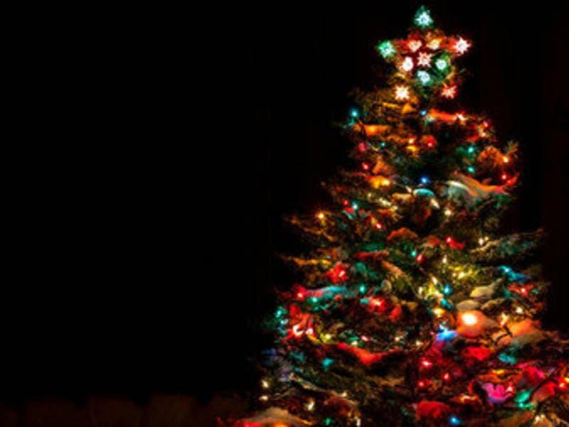 highwood holiday lights and 12 drinks of christmas cookie crawl - 12 Drinks Of Christmas