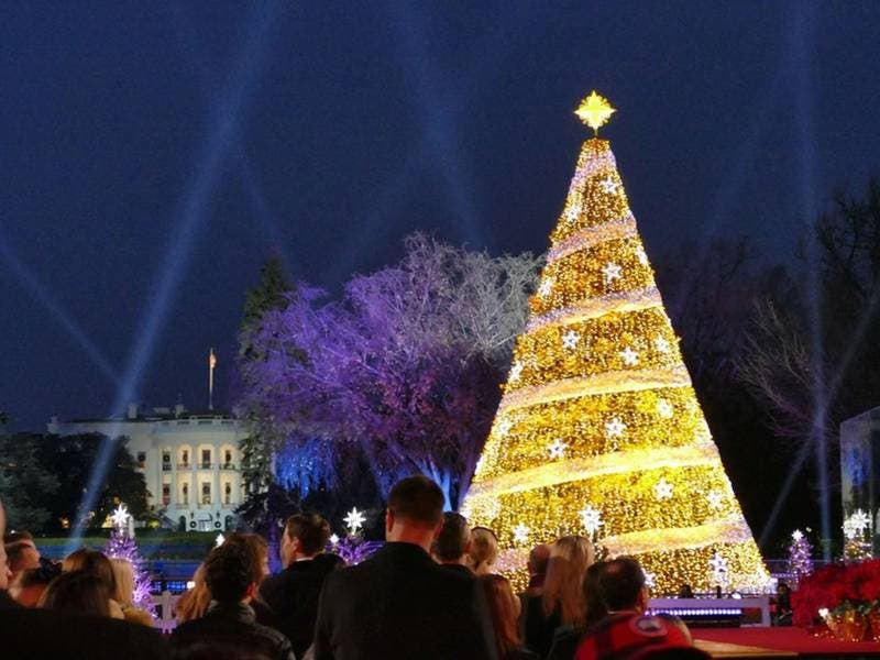 Christmas In Dc.Free Tickets Available For National Christmas Tree Ceremony
