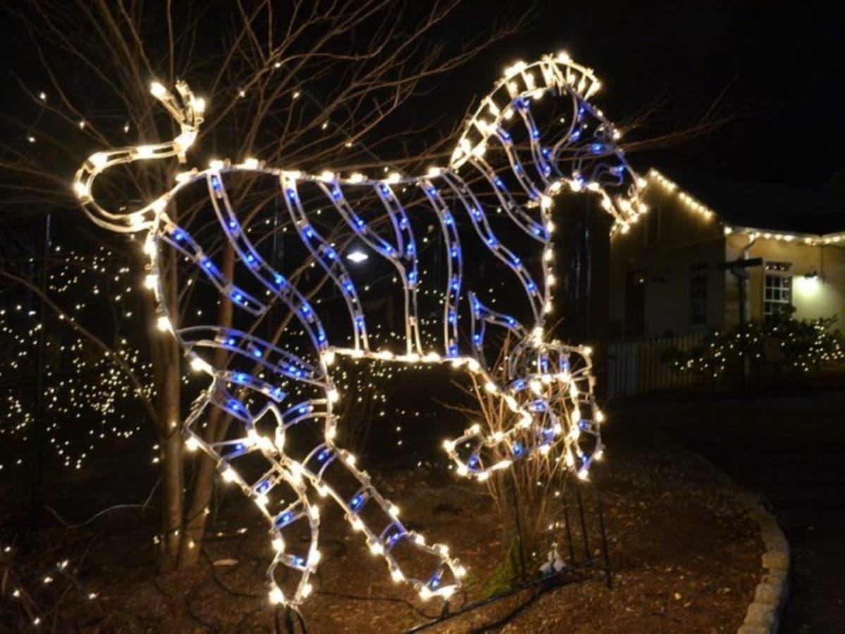 Turtle Back Zoo Christmas Lights 2019.See Santa Free Holiday Lights At Turtle Back Zoo In New