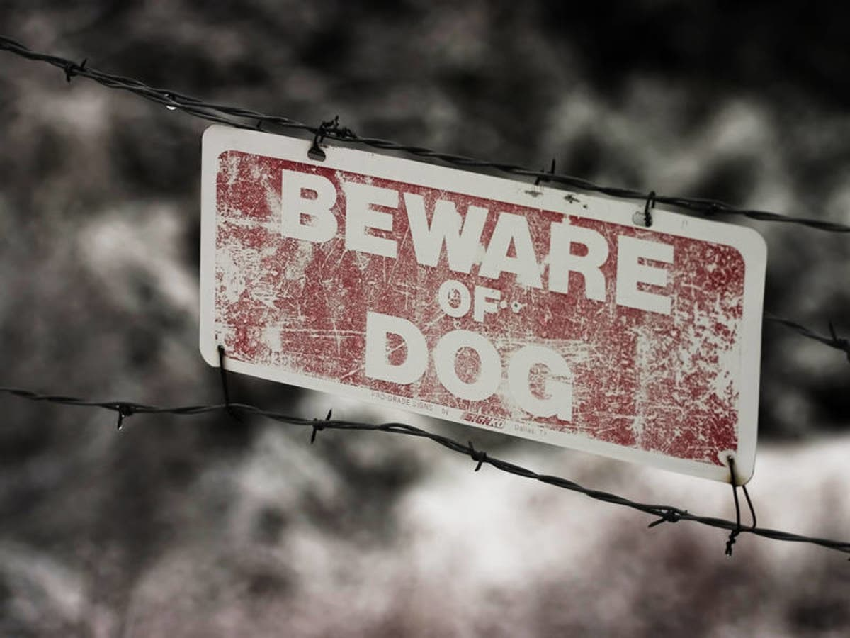 3248b7ffe 4 Dog Attacks On Postal Workers In West Chester Last Year: Study ...