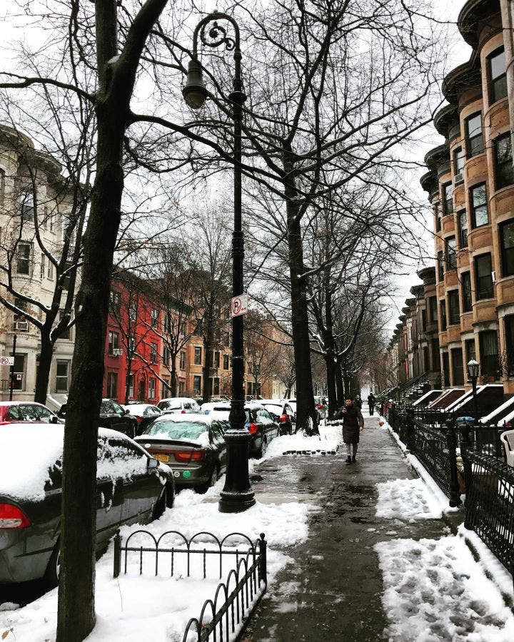 How Much Snow Fell In New York City Saturday?