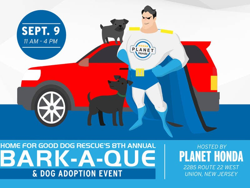 Nice Rescue Dogs To Find Homes At Planet Honda NJ This September