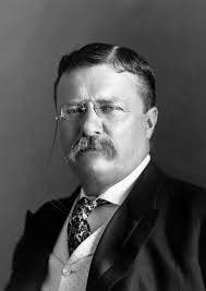 Roosevelt, Pulitzer, & Hearst: Press Rivals & Pres. Enemies - Patch.com