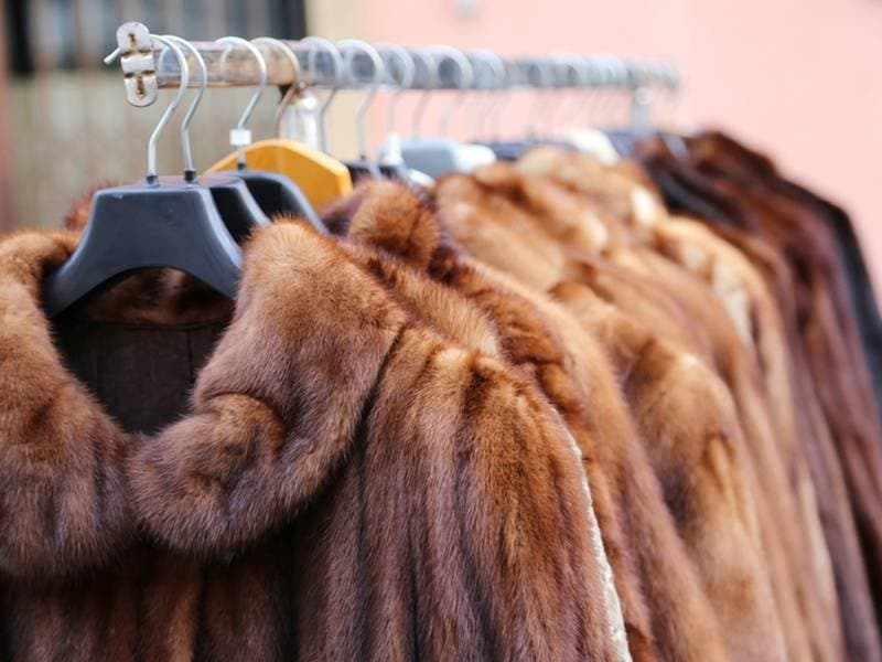 UWS Lawmaker Wants To Ban Fur Sales In New York