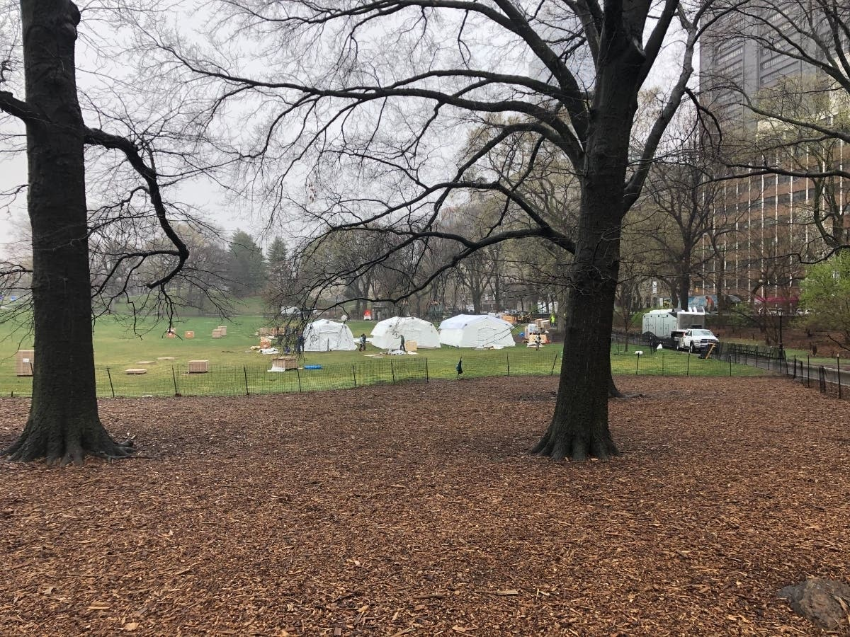 Mount Sinai Builds Central Park Coronavirus Field Hospital
