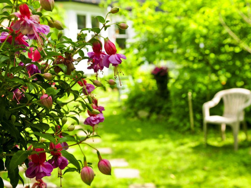 Monmouth County Home Garden Symposium Is March 30
