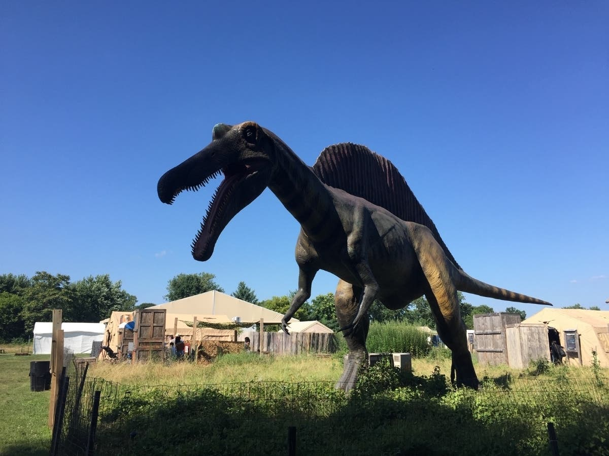 Visit Field Station: Dinosaurs In Their Overpeck Park Home
