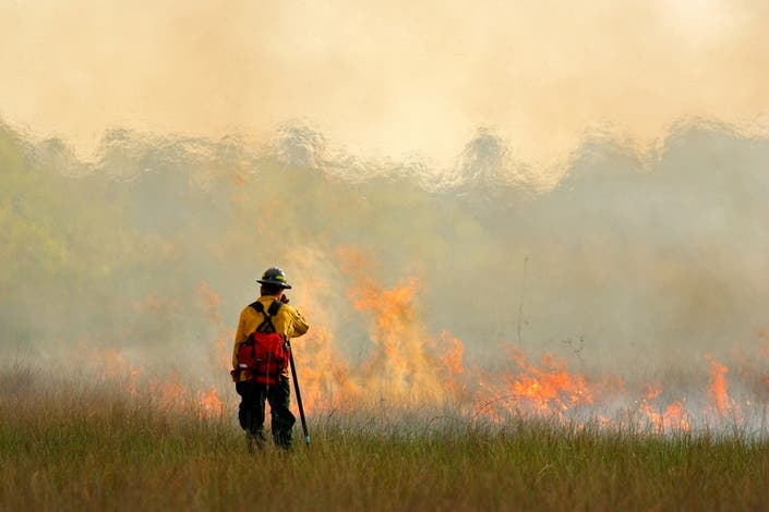 Planned Forest Fire At Ash Brook Reservation Friday