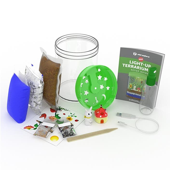 Celebrate Spring With A Terrarium Kit For All Ages Dealtown Us Patch