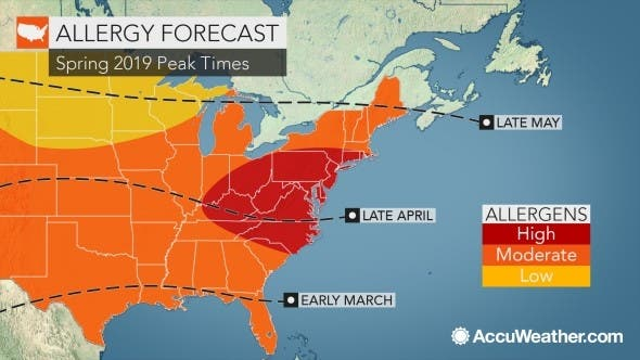 Allergy Forecast: Here's When Season Will Peak In