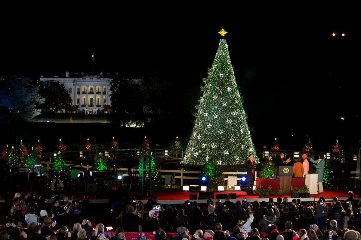 Watch Live 2016 National Christmas Tree Lighting Ceremony At The