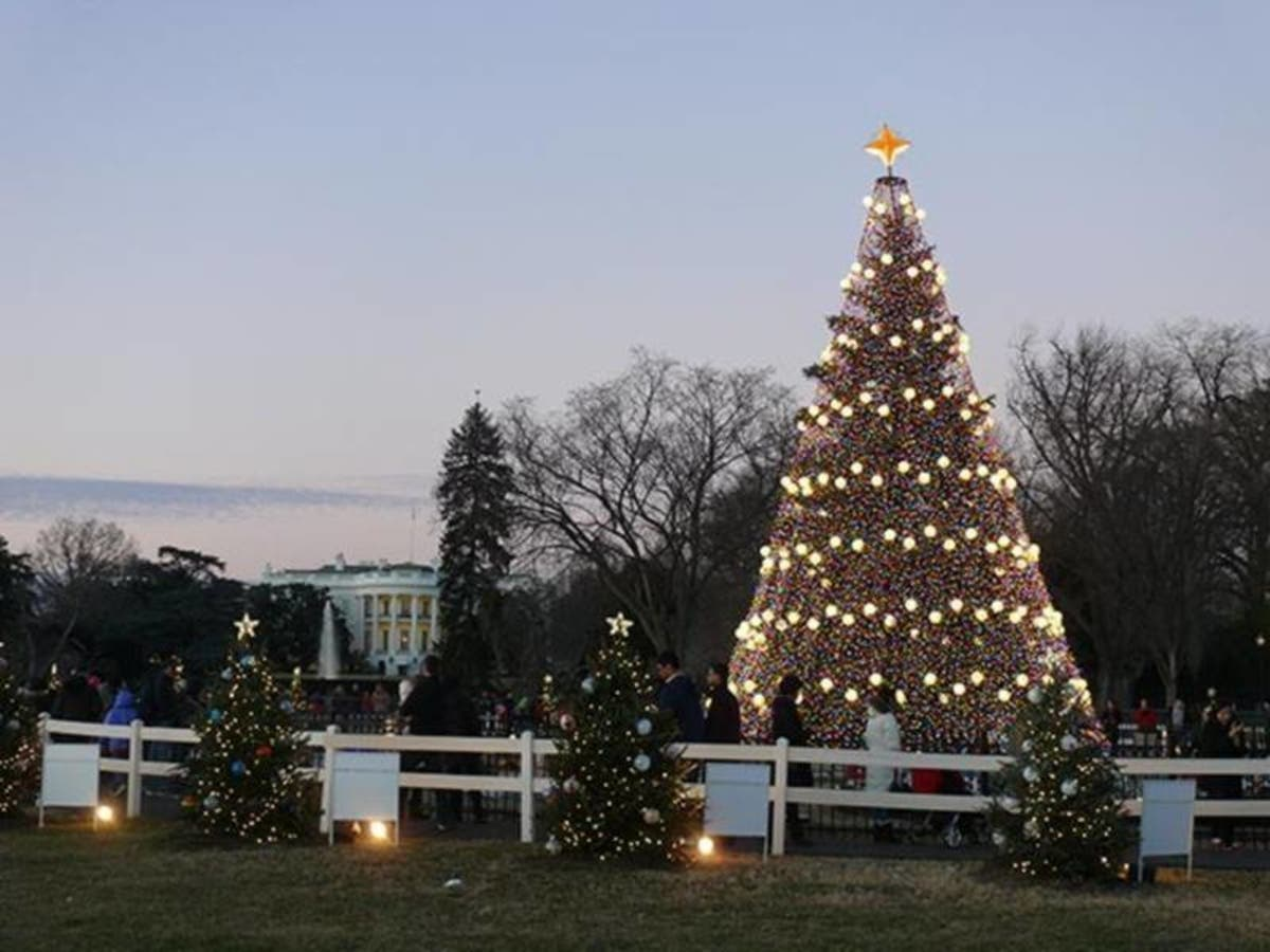 National Christmas Tree Lighting.Dc Christmas Tree Lighting Livestream 2017 Watch Here