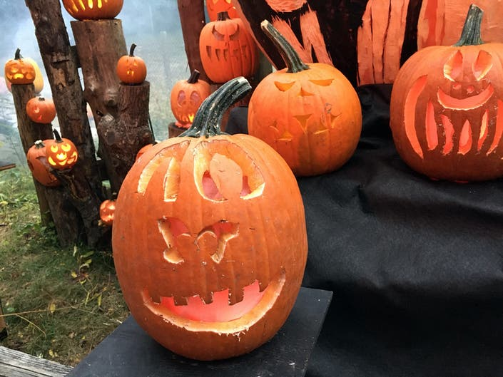 Reston Trick-Or-Treating Hours For Halloween 2019