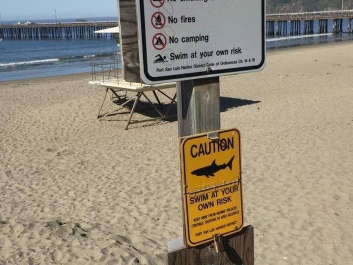 Donations For Cape Cod Shark Buoys To Be Returned