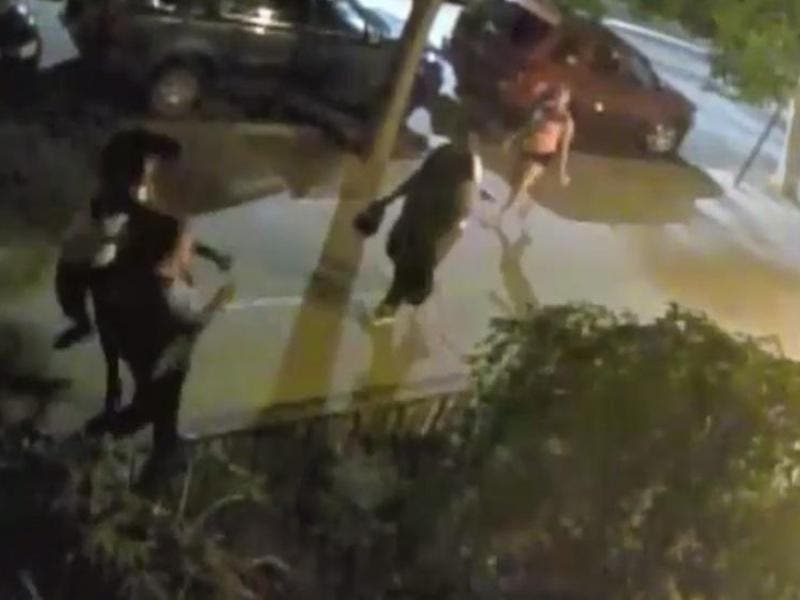 Video 65 Year Old Man Randomly Punched In Brooklyn Heights By Passing Pedestrian
