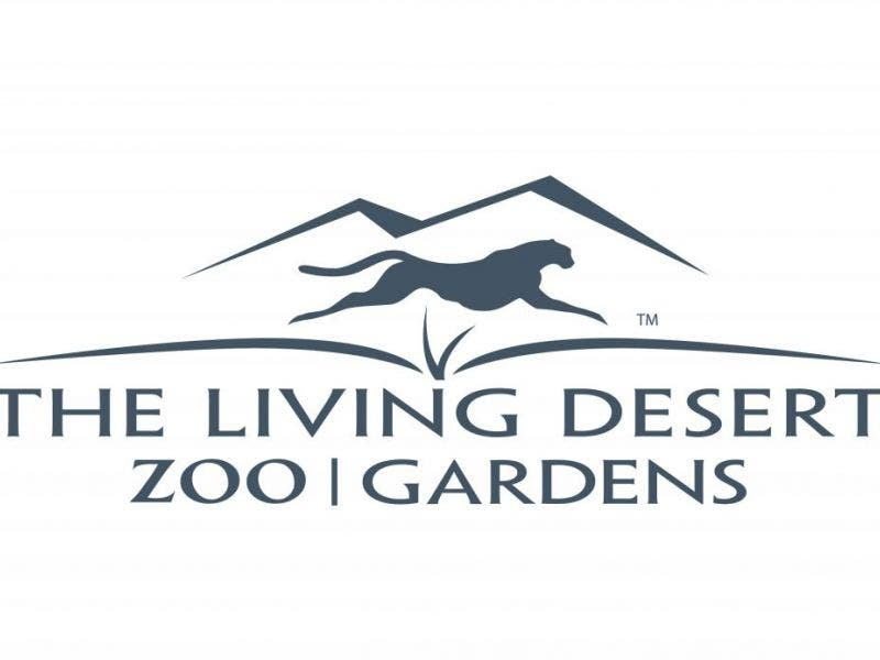 palm desert zoo sets annual attendance record for third straight