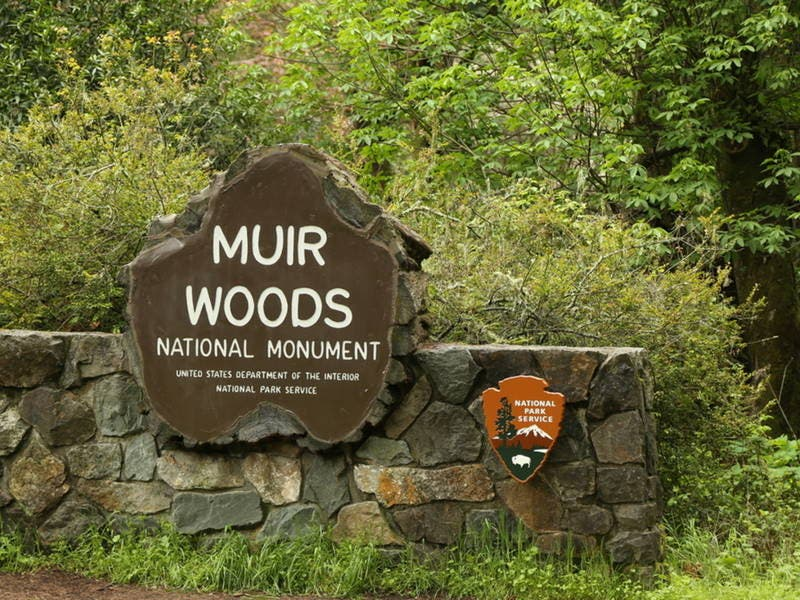 Fees Going Up At Muir Woods Monument, San Francisco Maritime