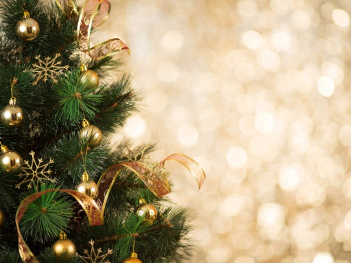 Where To Recycle Your Christmas Tree In San Diego | San ...