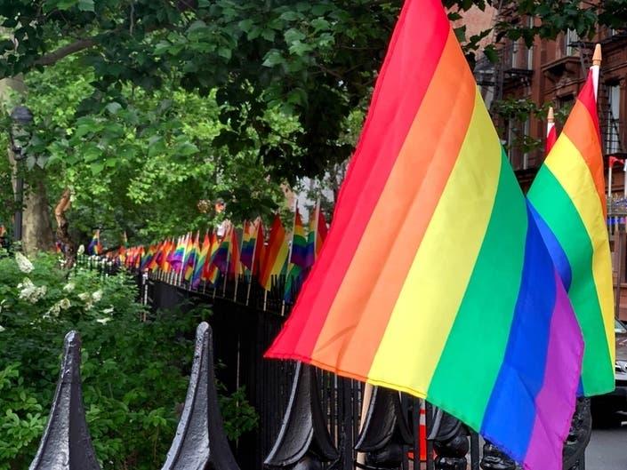 Police Officer Injured In Pride Protest
