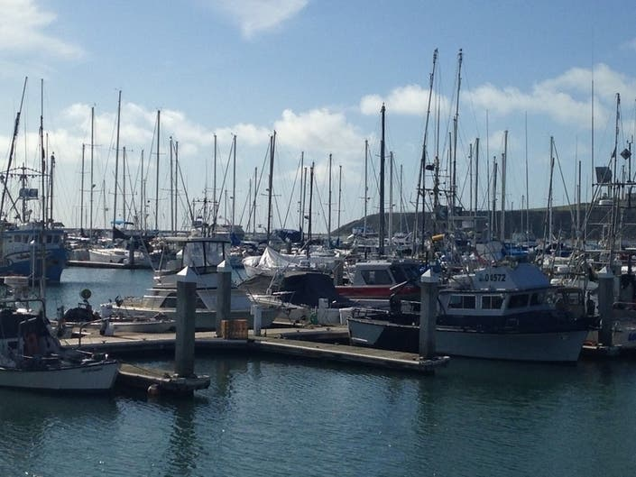 Recreational Crabbing Season Opens With A Warning