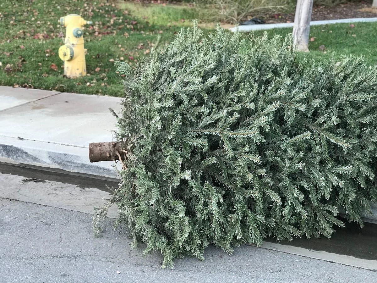 Menifee Location Offers Christmas Tree Recycling Option