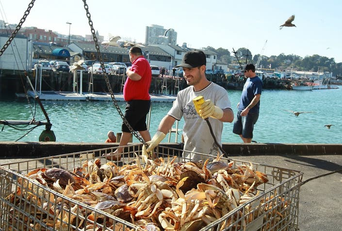 Commercial Crab Fishing Season Ends 3 Months Earlier Than Normal