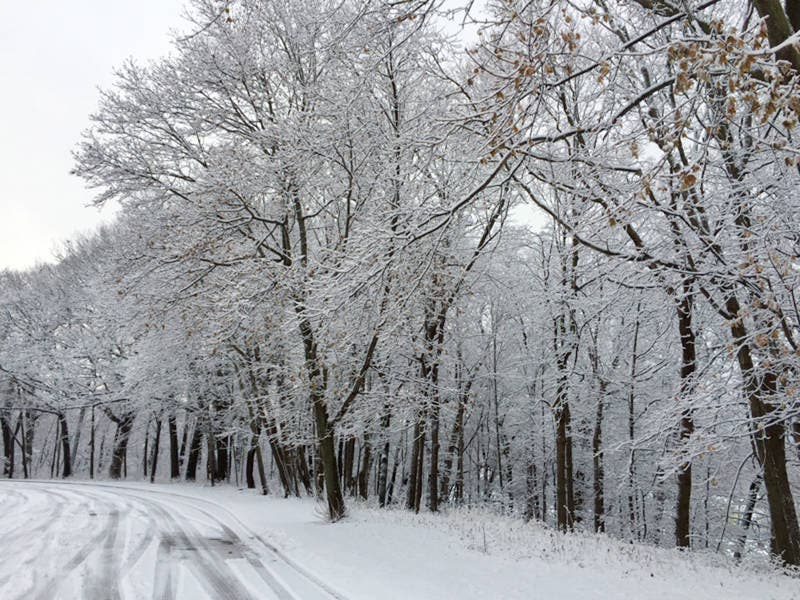 2019 Winter Weather Forecast In Wisconsin | Milwaukee, WI Patch