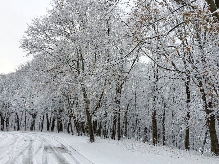 Siberian Connection Will Cause Frigid Wisconsin Winter: Report