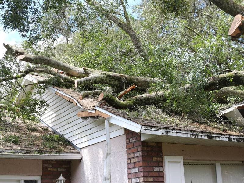 Interest Free Loans Available To Protect Pasco Homes