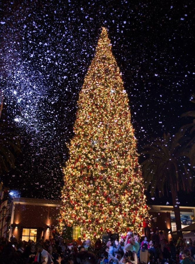 Island Christmas Tree.Newport Beach S Fashion Island Christmas Tree Lighting Goes
