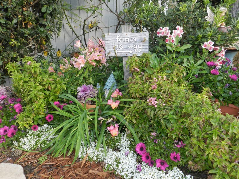 Laguna Beach\'s Fairy Garden: Photos Of The Week   Laguna Beach, CA Patch