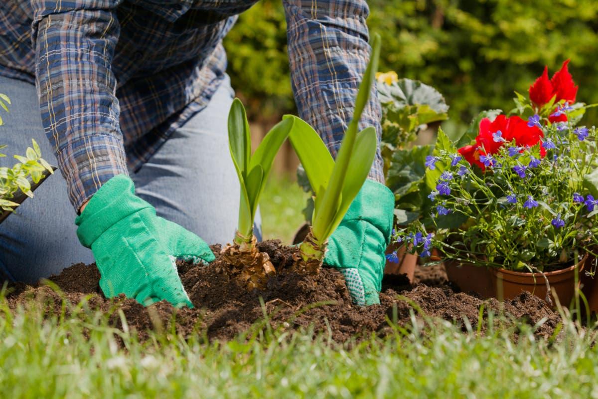 Home Checklist: Spring Gardening Tips
