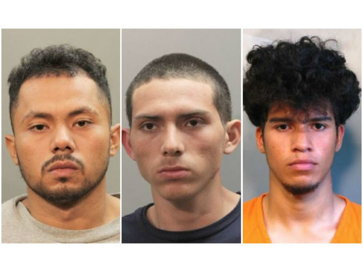 MS-13 Members Plead Guilty In Hempstead Lake Park Assault