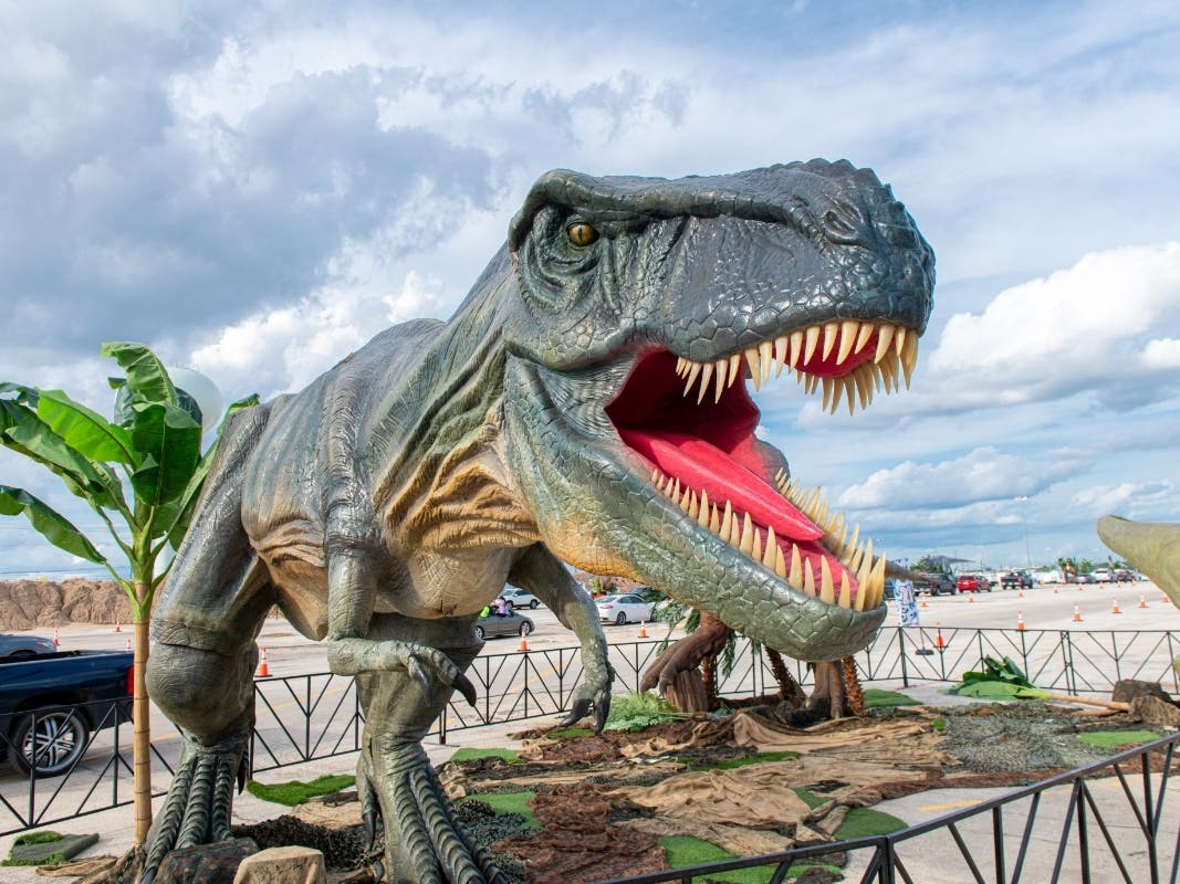 Dinosaurs Come To Long Island In Jurassic Quest