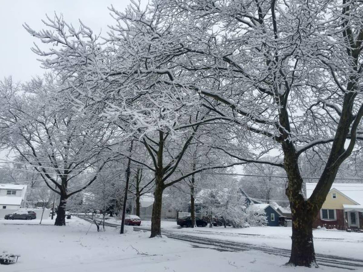 Williamson County Schools Closed Thursday, January 18