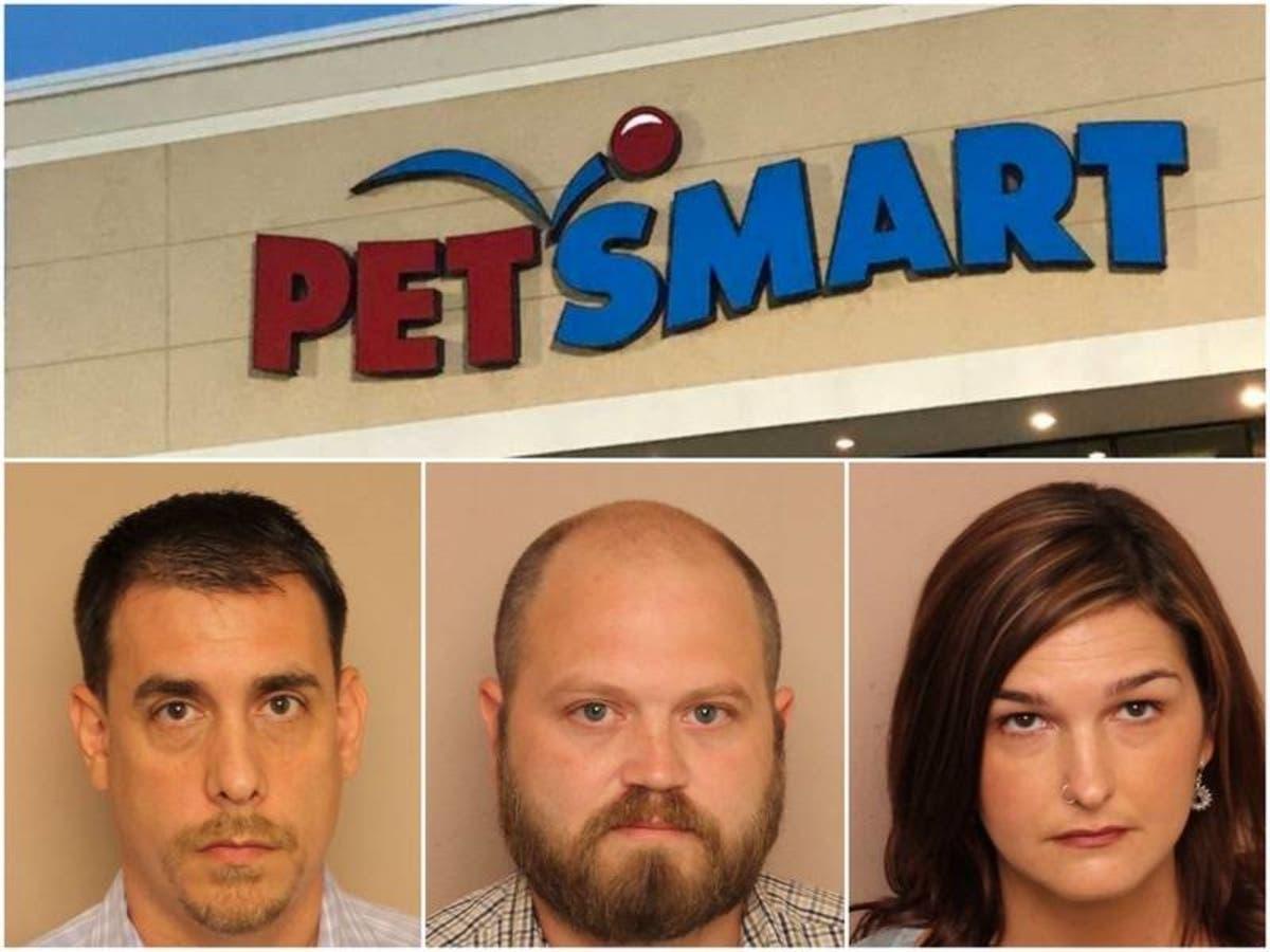 Bellevue Petsmart Employees Plead Guilty To Animal Cruelty Nashville Tn Patch