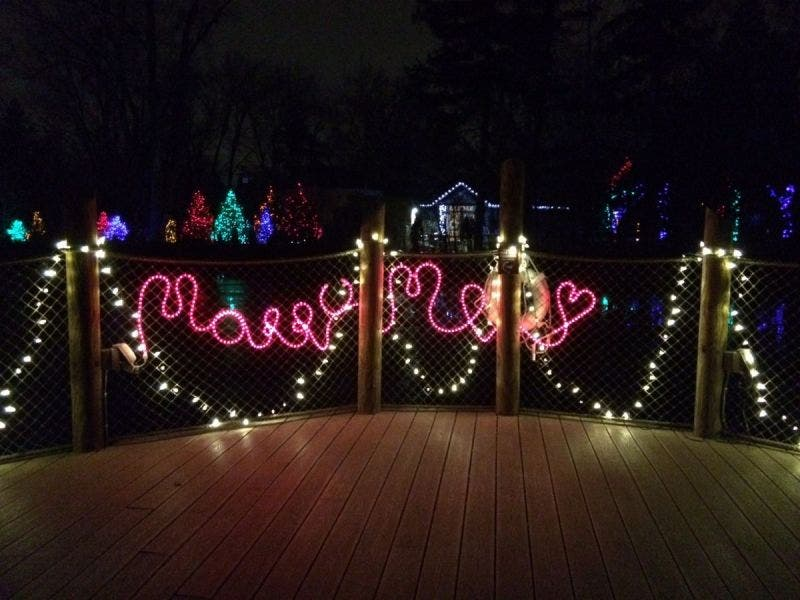 Detroit Zoo Christmas Lights.Tis The Season For Proposals At The Detroit Zoo S Wild