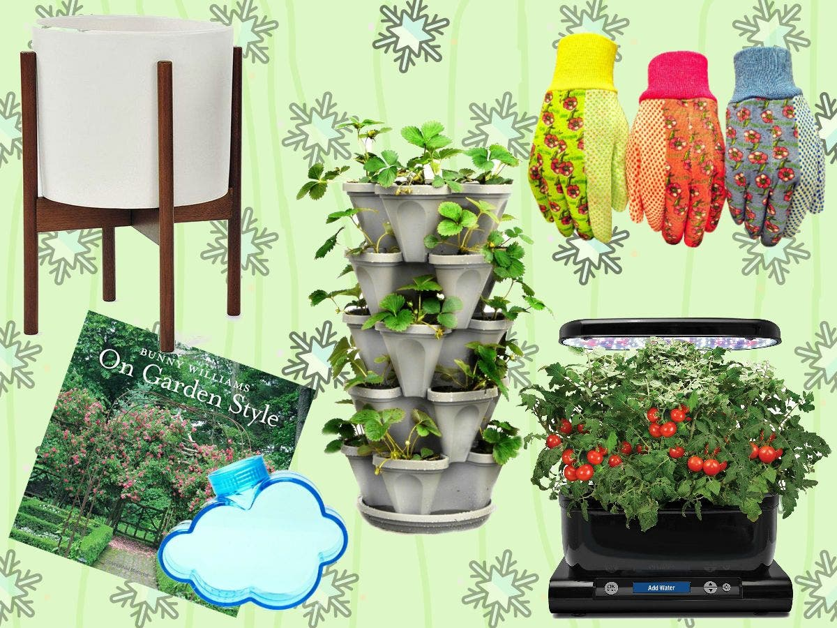 Patch Holiday Gift Guide: Essential Gifts For Gardeners ...