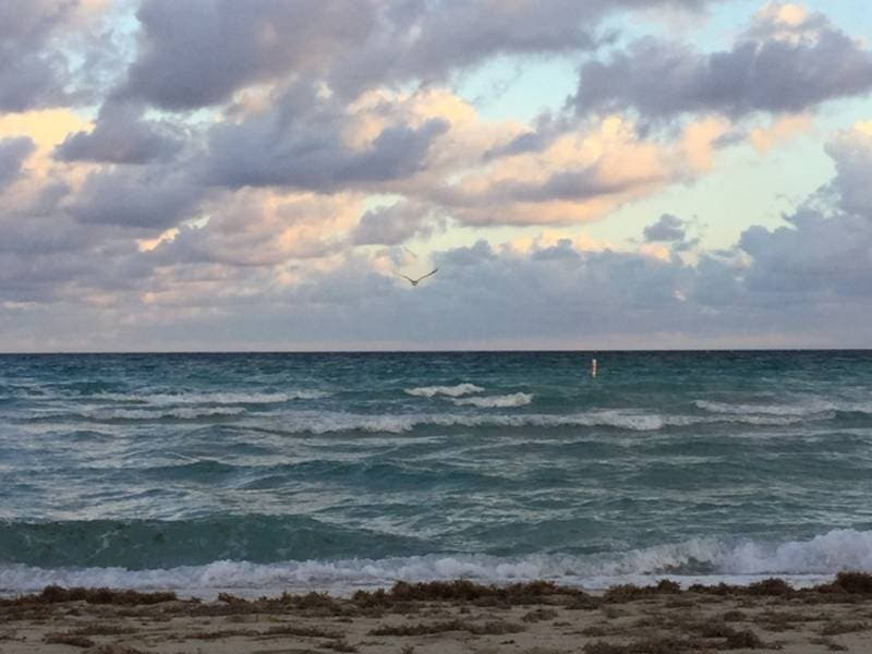 Swimming Advisory Issued For Multiple Miami Dade Beaches