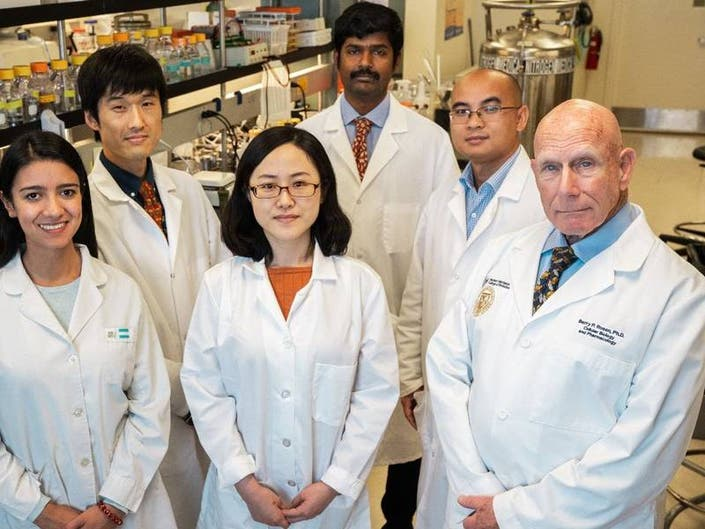 FIU Reports New Broad-Spectrum Antibiotic Found In Rice Paddies