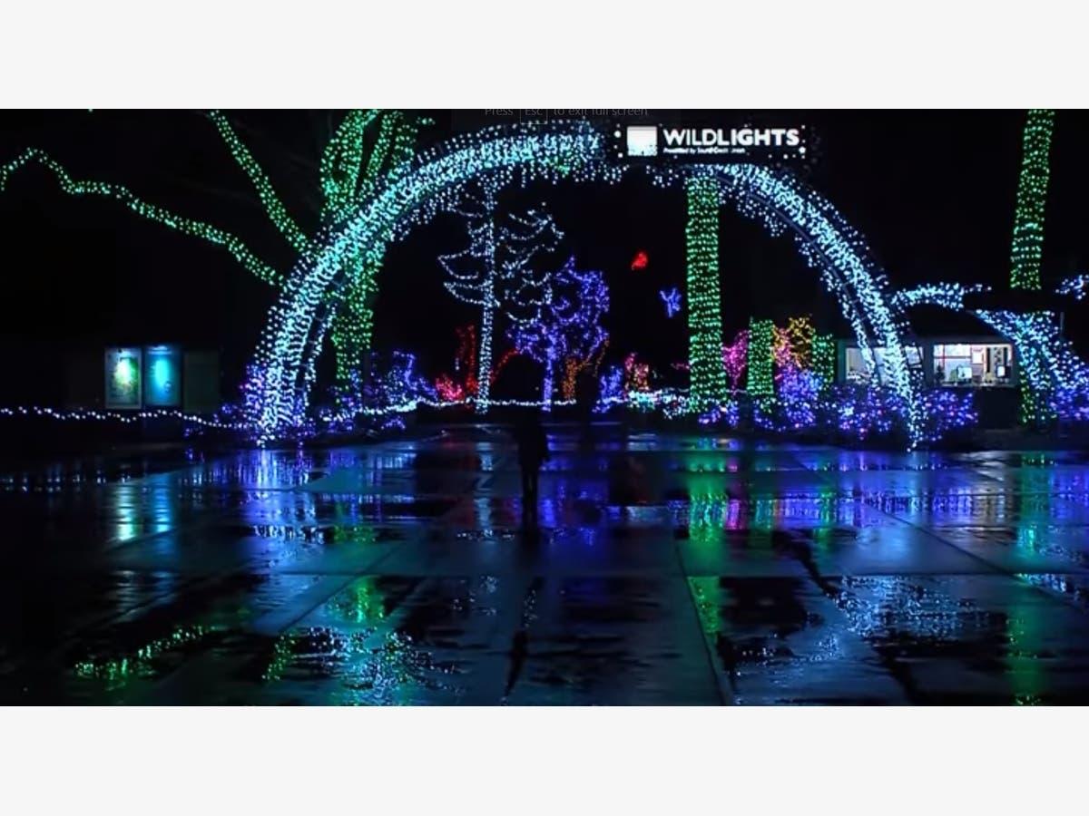 14 Christmas Lights Displays To Visit Near Gig Harbor